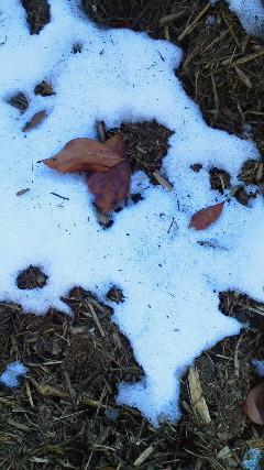 残りわずかな雪