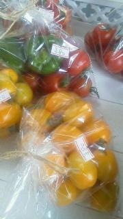 プチトマト収穫しました