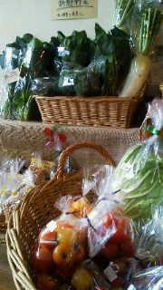 野菜たくさんあります