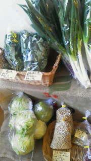 本日も野菜あります