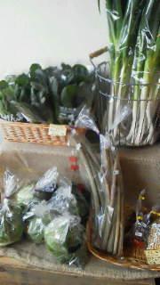 野菜販売中