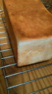 試作食パン