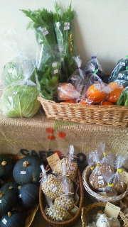野菜入荷しました。