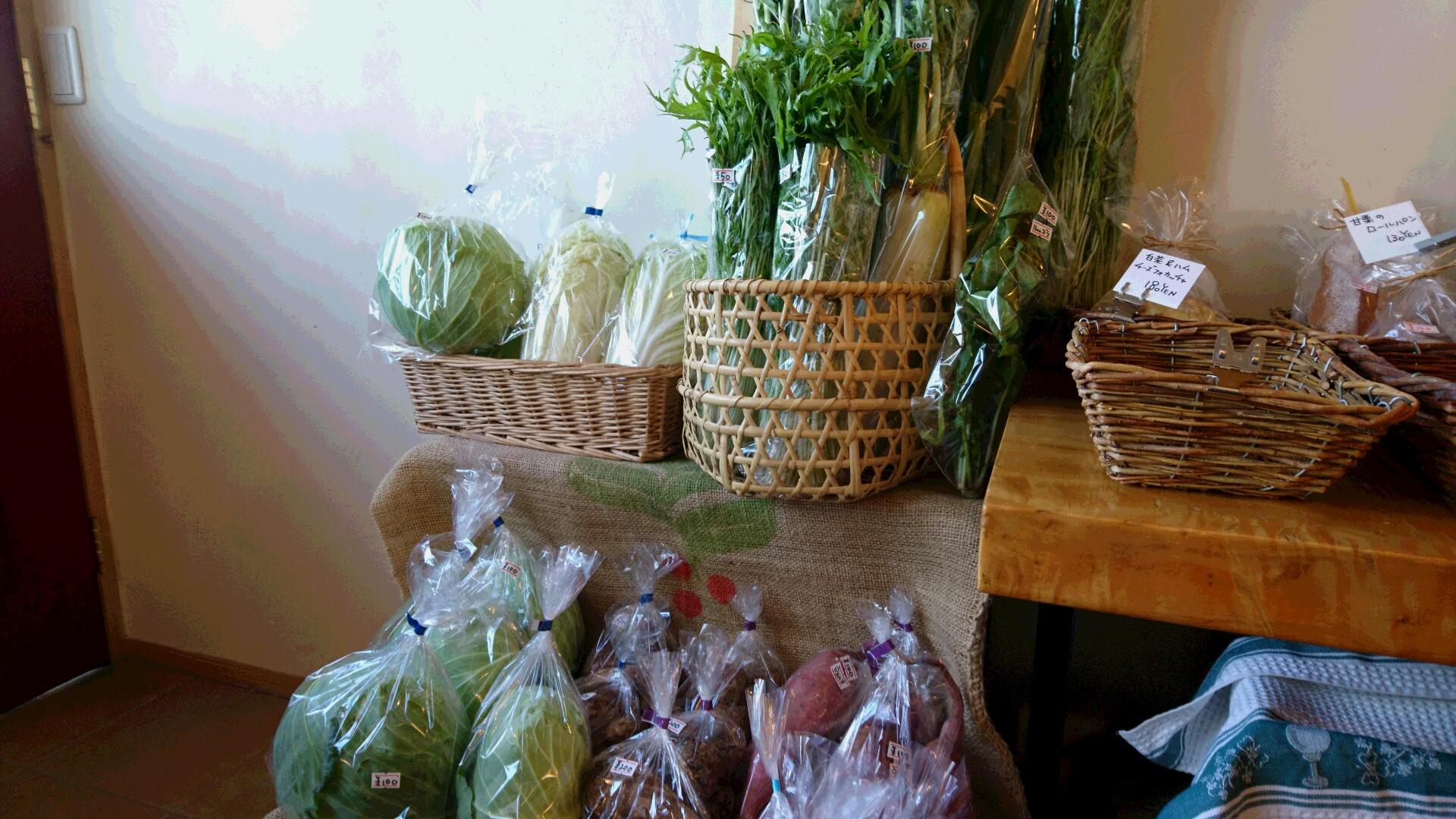 今日も野菜盛りだくさんです。